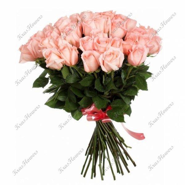 29 роз сорта Энгажемент