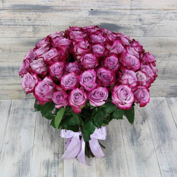 51 роза сорта Дип Дерпл