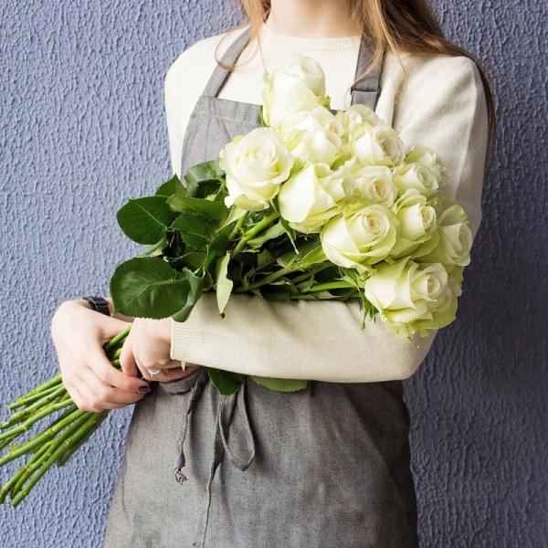 роза ALBA