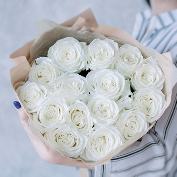 Роза Playa Blanca