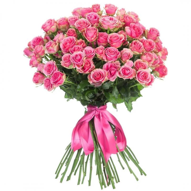 Розовая кустовая роза