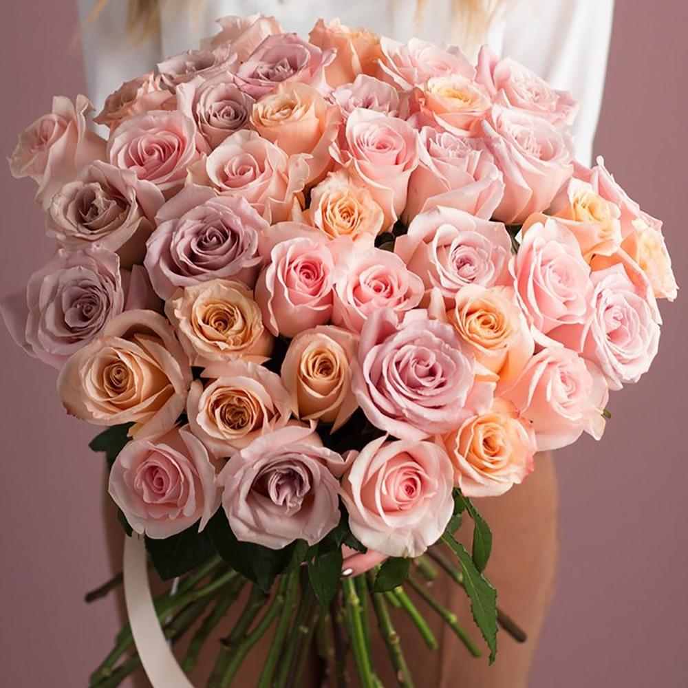 Роза Tiffani